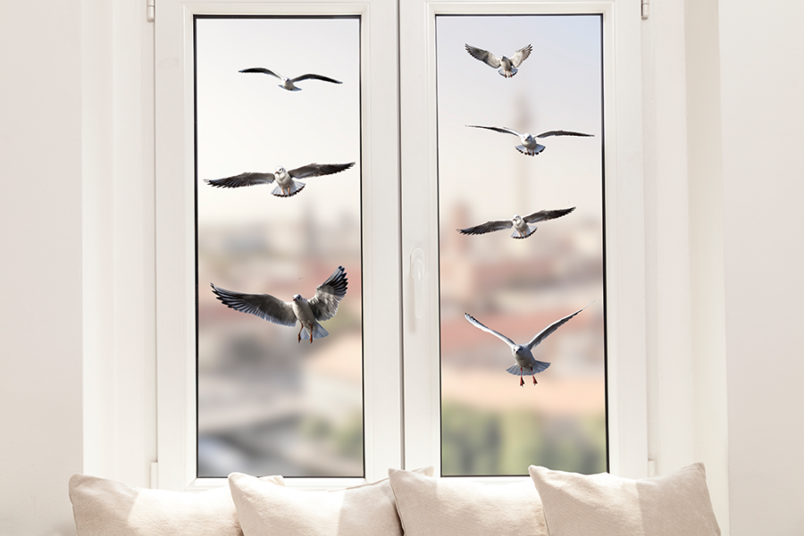Seagulls Window Sticker